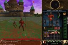 Castle-armordillo