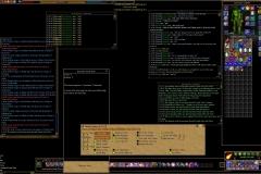 ScreenShot06778 copy