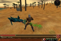 13887-asheron-s-call-windows-screenshot-can-i-interest-you-in-a-breath