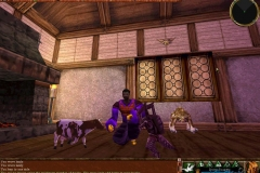 28840-asheron-s-call-windows-screenshot-a-few-of-the-pack-dolls-in_zpsf81eapl4
