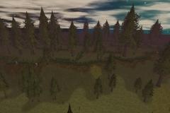 A'nekshay_Woods_Live