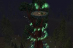 Viridian_Deru_Tree_2_Live